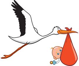 stork.and.baby